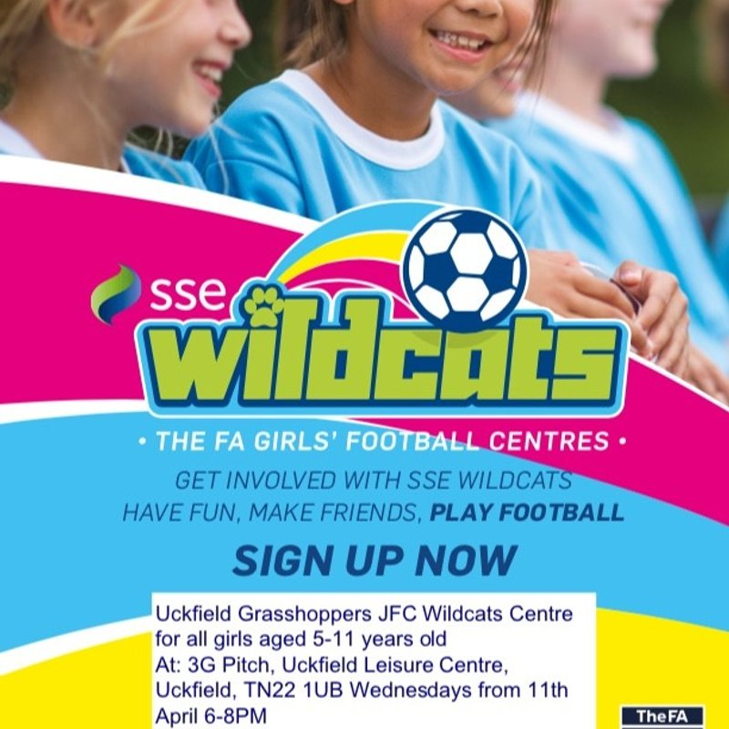 Uckfield Grasshoppers JFC Wildcats Centre