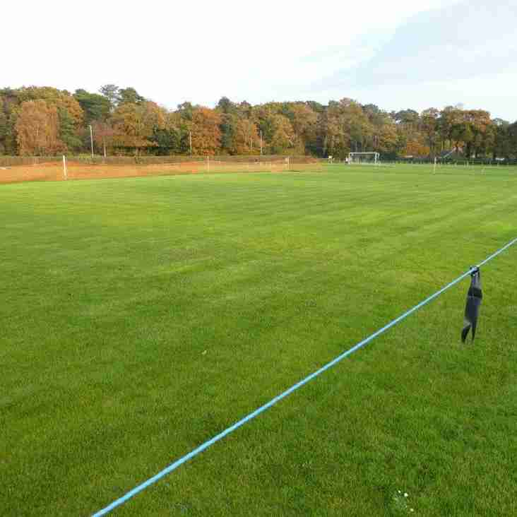 The Cricket 'Square'
