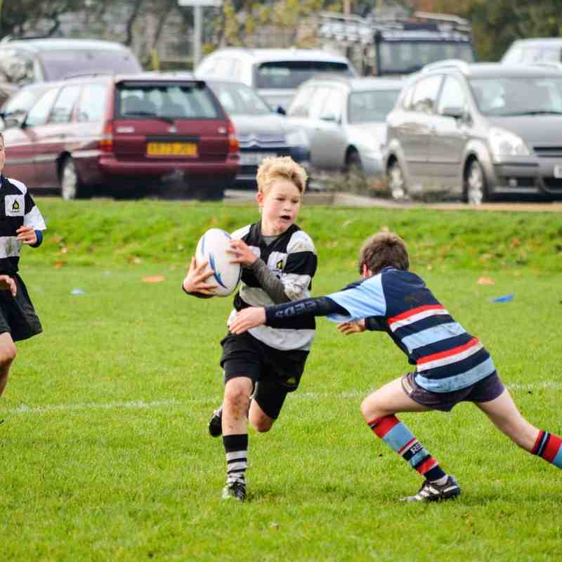 U12 Festival at Farnham - 16 November 2014