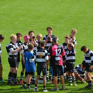 Farnham U14As deliver victory against Camberley