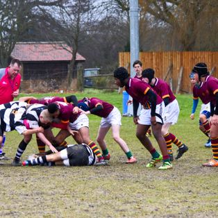 Wimbledon Warriors prove to be tough to beat for the U14As
