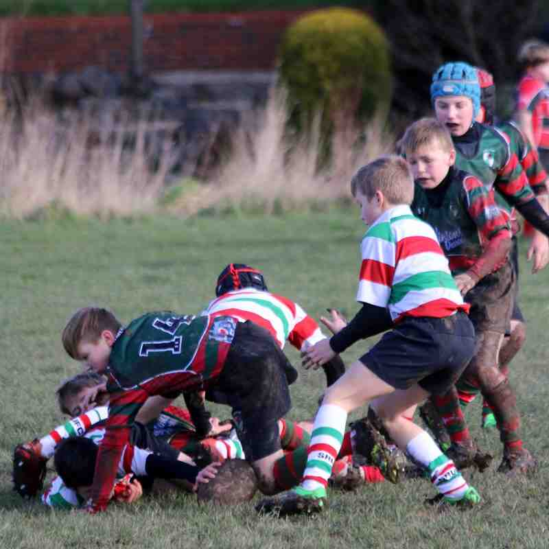 Wrexham u11s vs Mold/Stockport RFC
