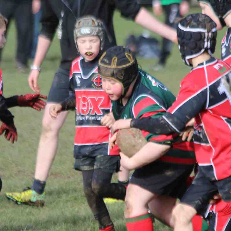 Wrexham U10s vs Mold - 14th February 2016