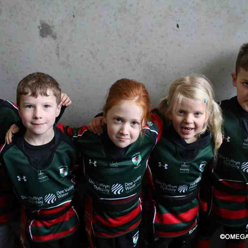 Wrexham U7s vs Sandbach - Sale Sharks Guard of honour - 19-02-17