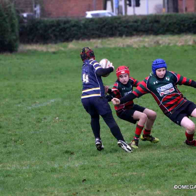Wrexham U11s vs Anselmians RFC - 26-02-2017