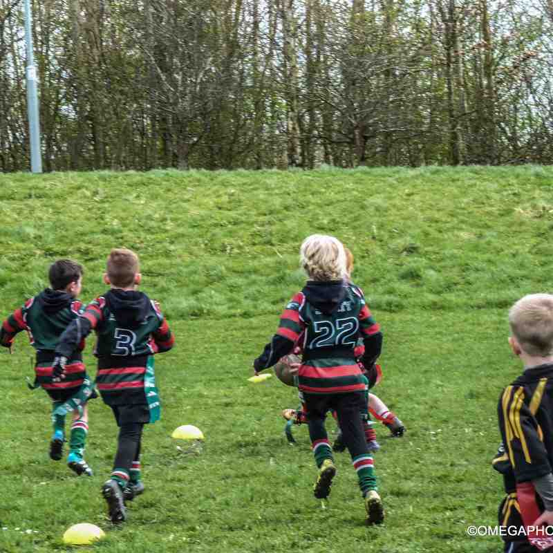 Wrexham U7s at Rhos minis festival - 19/03/2017