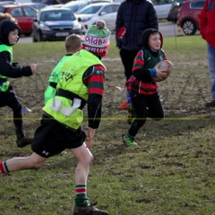 Wrexham U8s vs Denbigh and Rhos - 11/02/2018