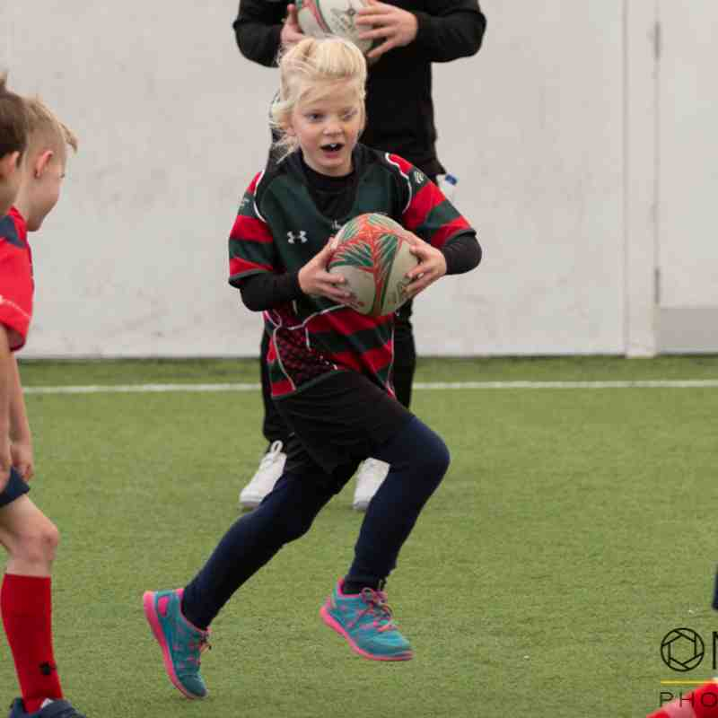 Wrexham U9s - Prematch festival - RGC vs Bargoed