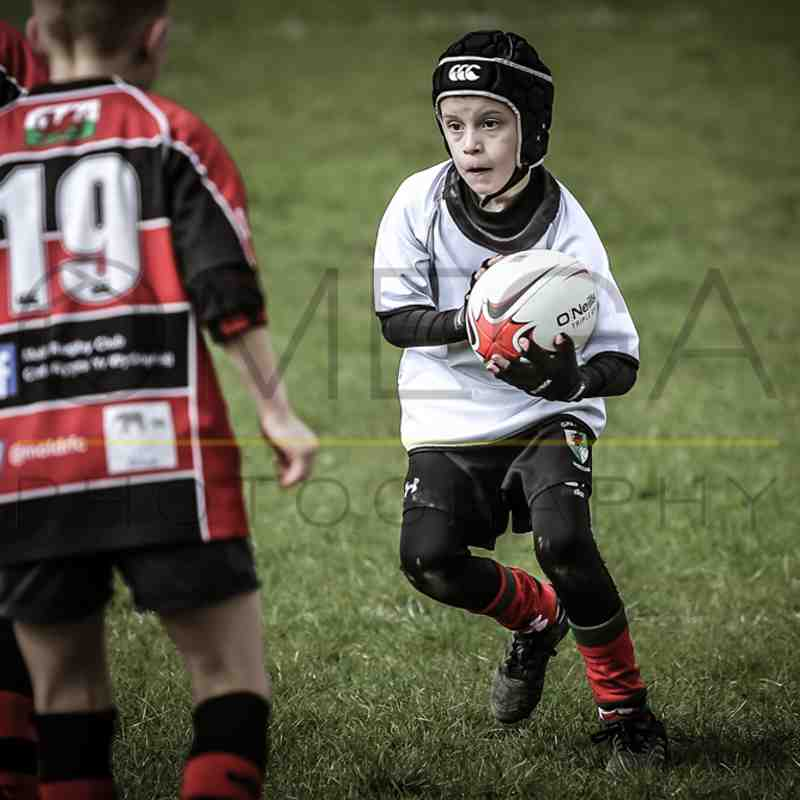 Mothers Day festival at Oswestry - Wrexham U9s