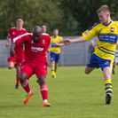 Hayes & Yeading United 1 Aylesbury FC 1