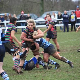 Spirited Nuns not enough for Strong Newbury