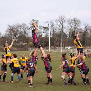 ABBEY NUNS WIN CHAMPIONSHIP SOUTH WEST 2!