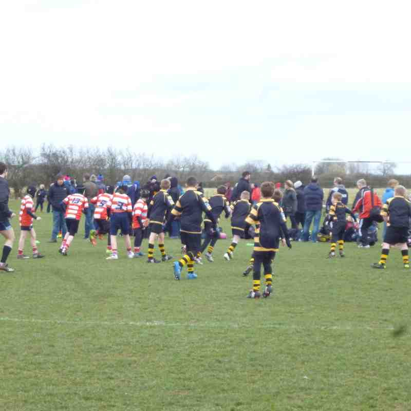 Newcastle Falcons U11s Tournament March 2015
