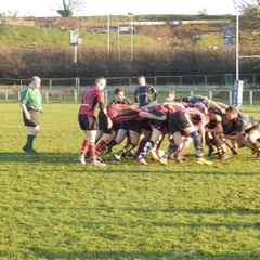 Hereford Development XV 12 Newent 2nd XV 5