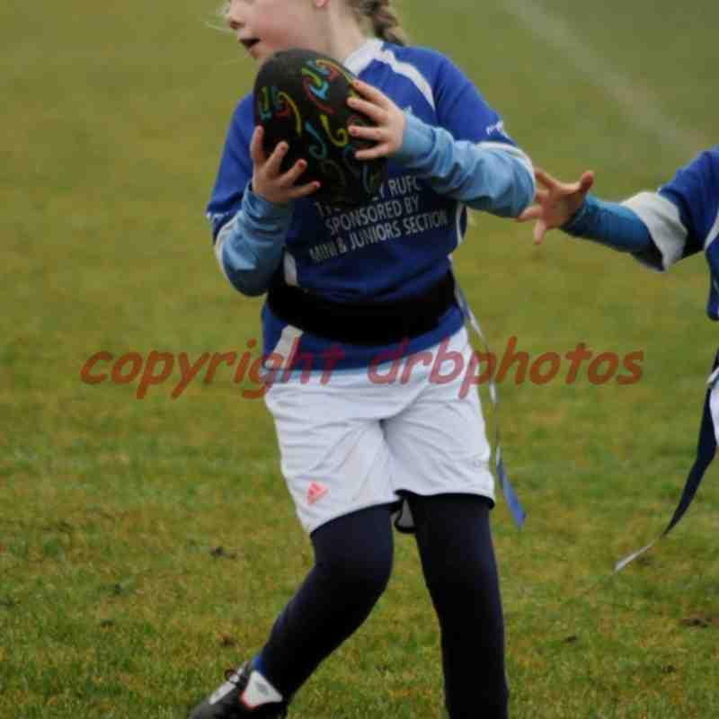 Under 8's V Bolton