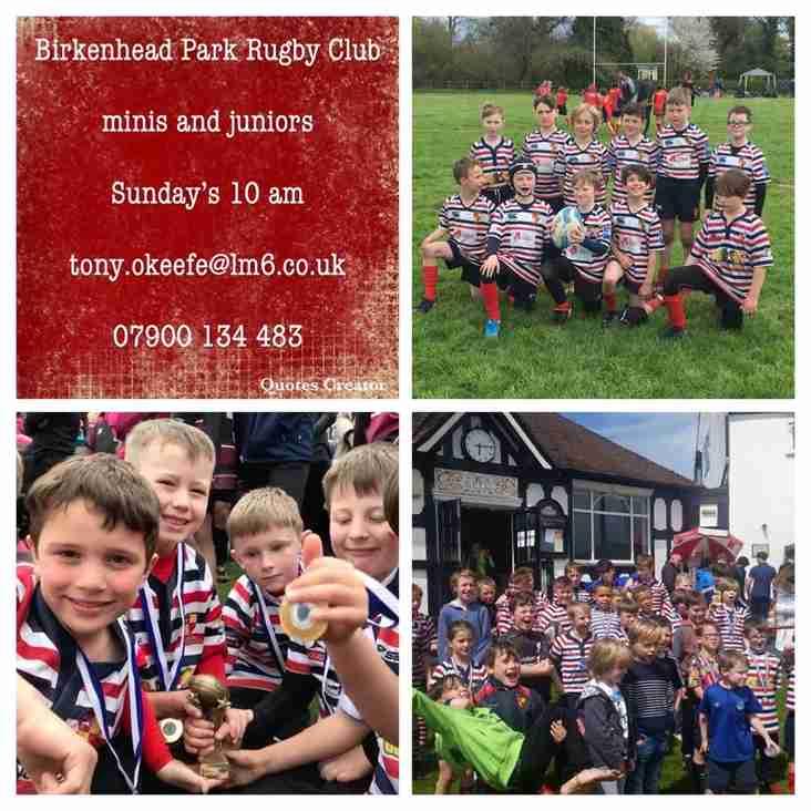 Mini & Junior Rugby
