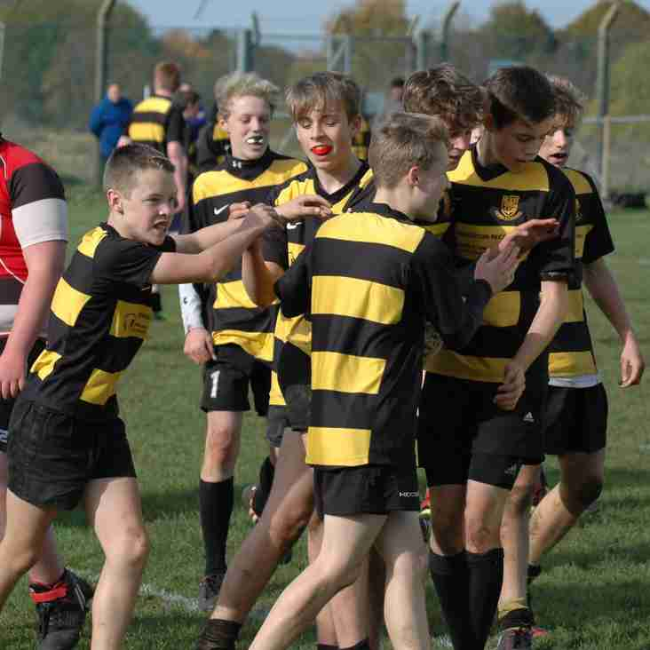 AGE GRADE RUGBY CHANGES FOR 2016/17