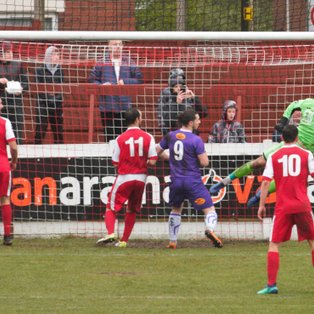 Robins finish all square