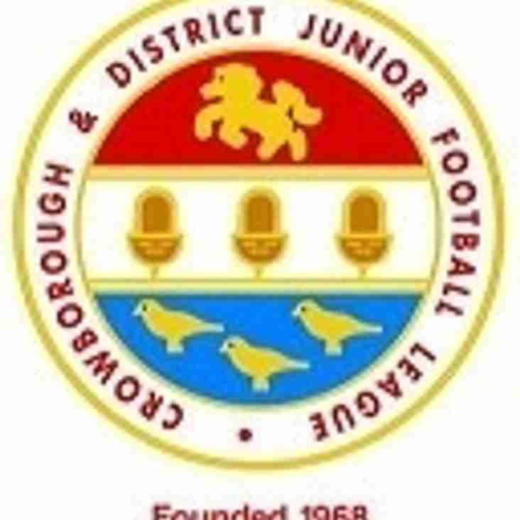 U14's (2017/18 season) Crowborough & District Junior Football League Team