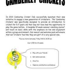 Camberley Crickets!