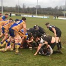 Harborough Win Battle with Bosworth