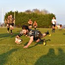 Chinnor bring Cinderford juggernaut to a halt