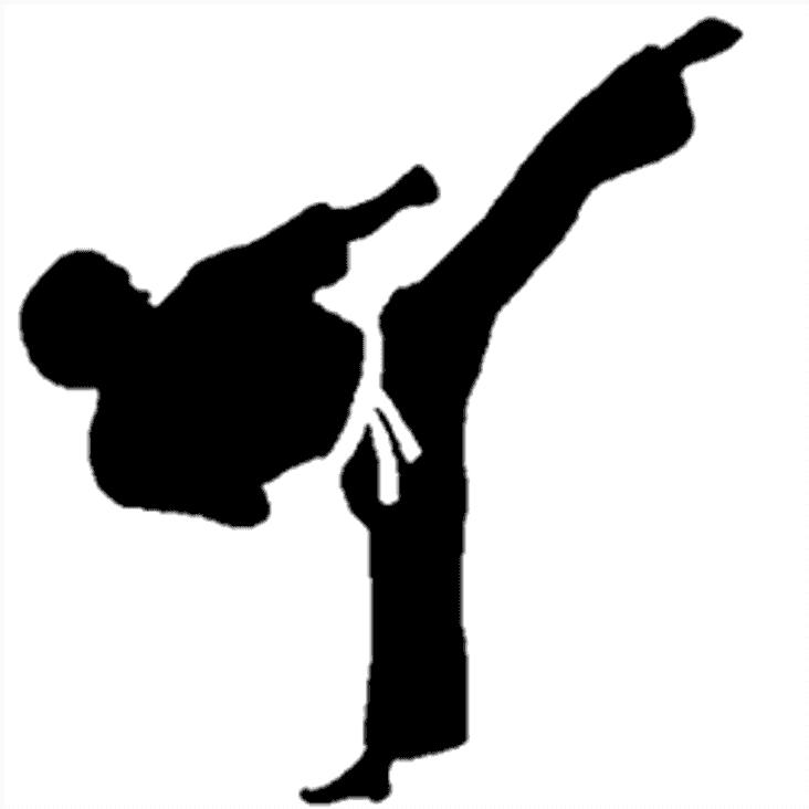 Taekwondo Fitness?