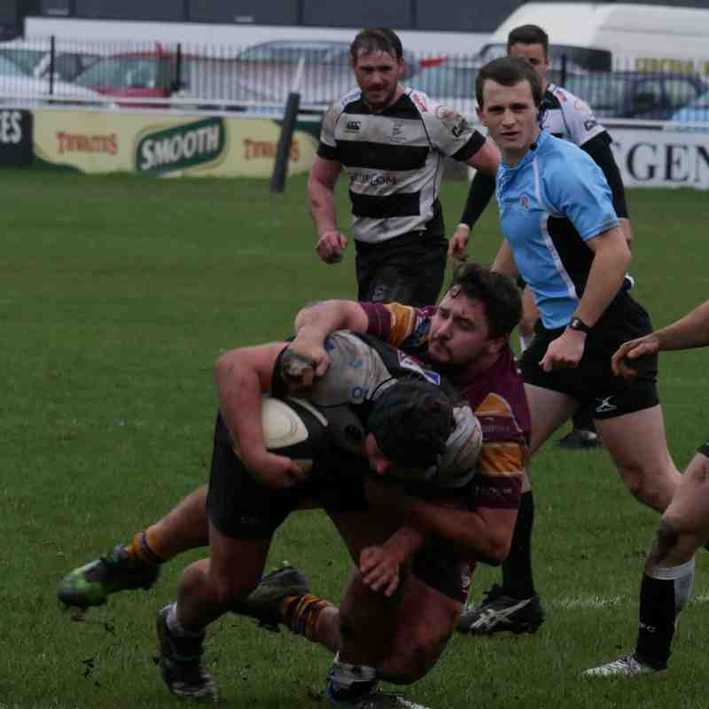 Sedgley Tigers 31  Luctonians 13