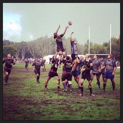 The Bingham Cup 2014, Sydney, Australia.