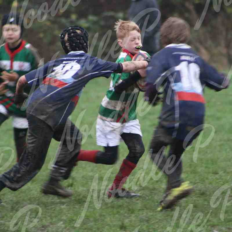U10's v Old Grammarians & Harlow - 13th December 2015
