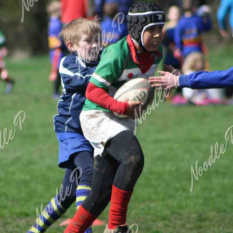 U11's v St Albans - 17th April 2016