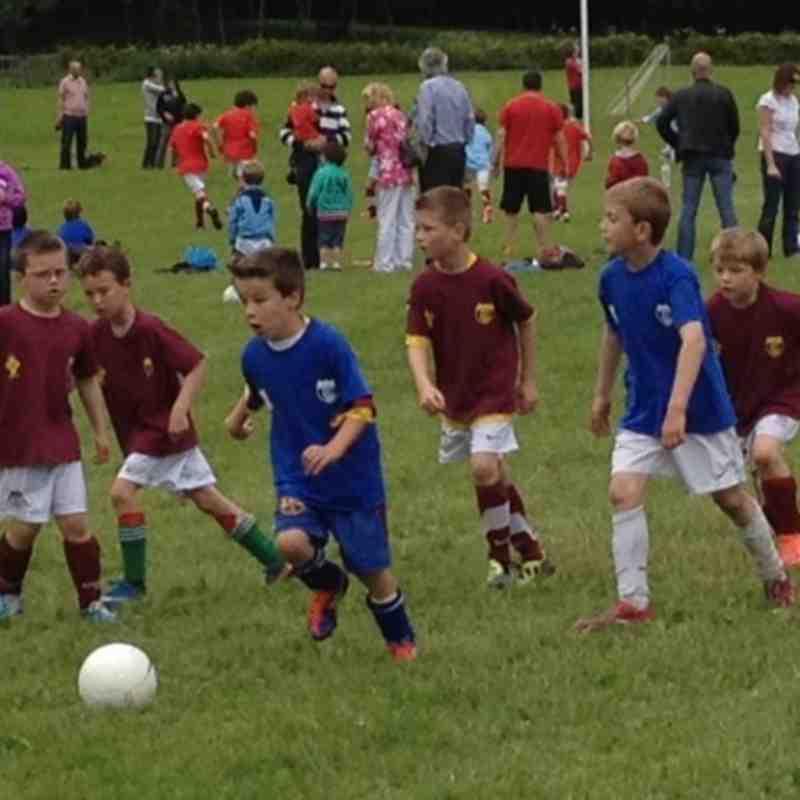 Mini World Cup 2012