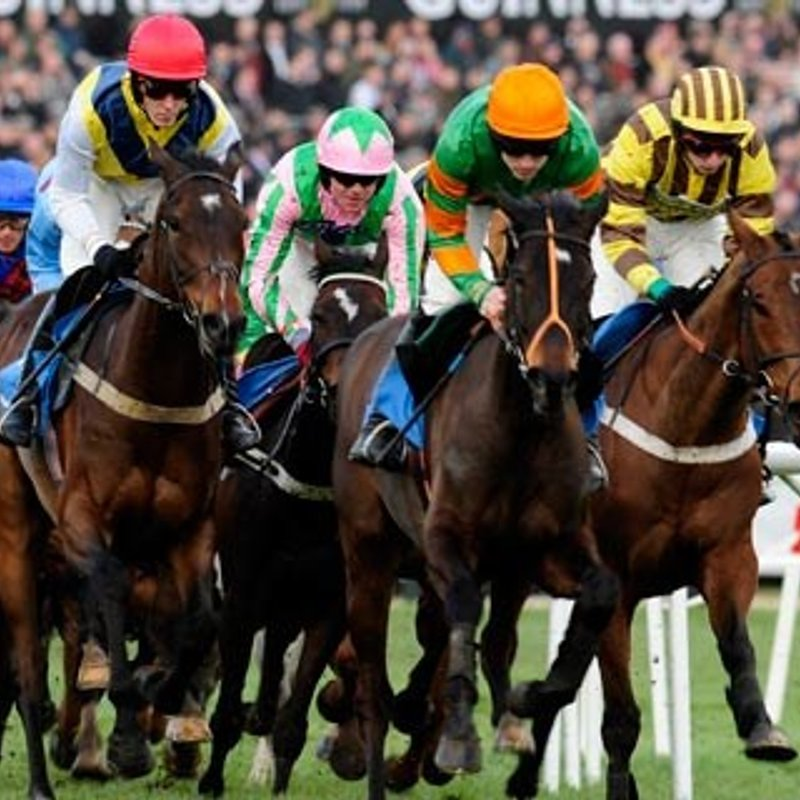 Club Day Out at the Races - All Welcome
