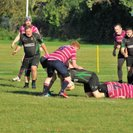 Newmarket 1st at home to Shelford 3s