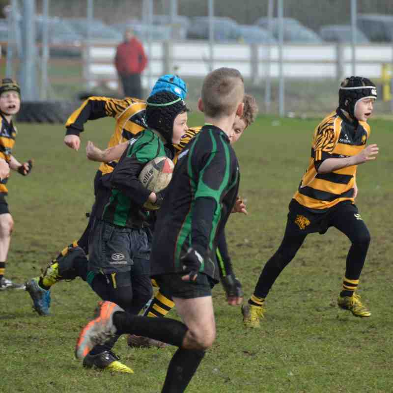 U10 Ely Away 21st Feb