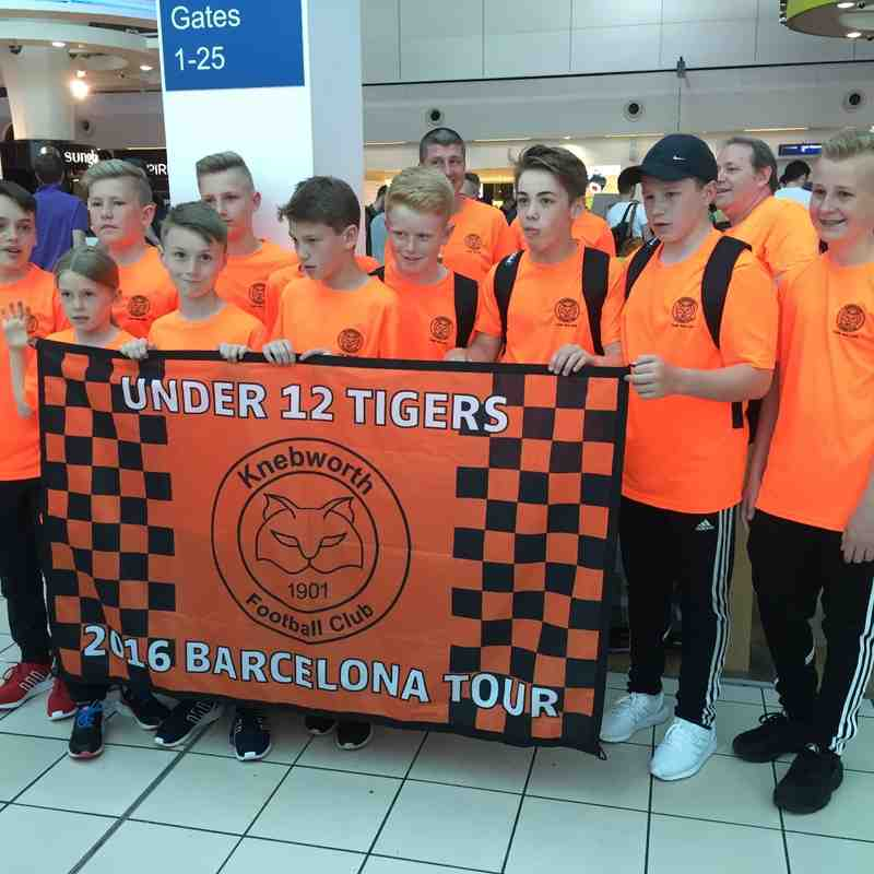 U12 Tigers v The Europa Cup - 16th June 2016