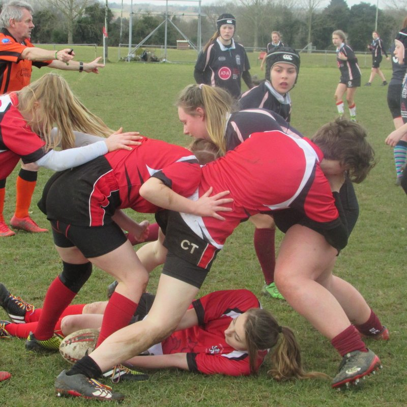 U15 Lionesses roar to victory!