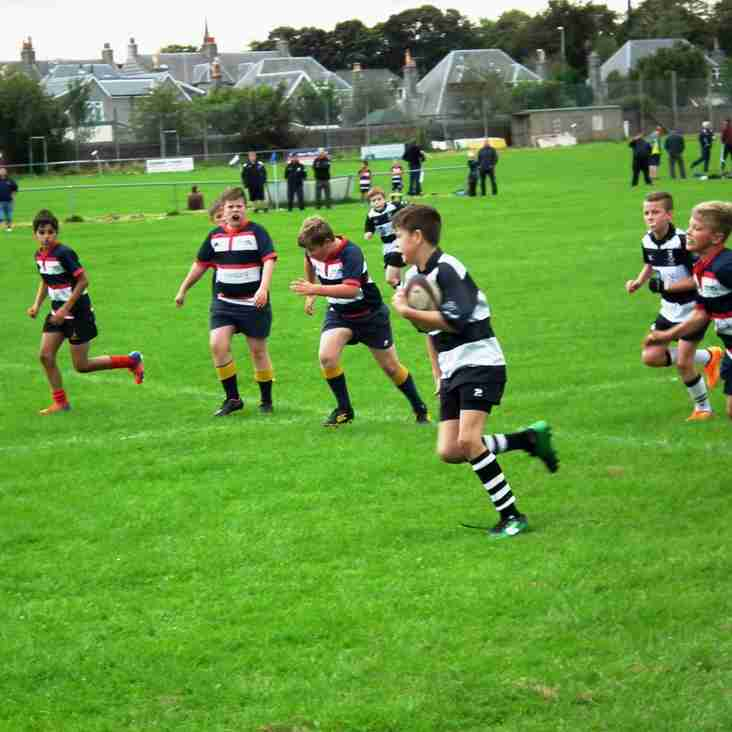 Perthshire Midi's make most of disrupted fixtures