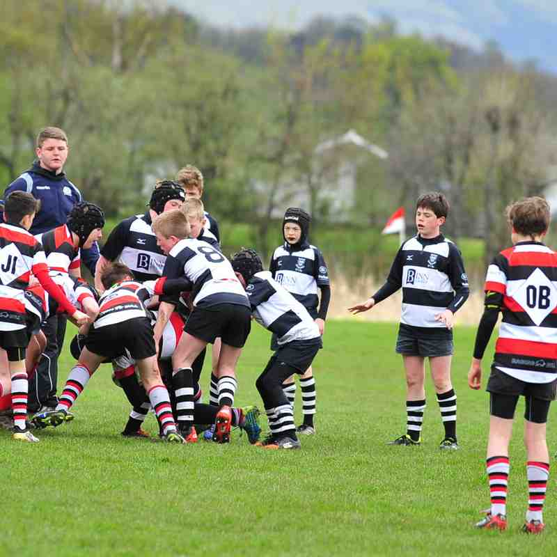 Perthshire U/13 beat Stirling 11- 0 16/04/17 (Pics by Louise)