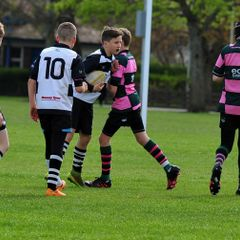 Perthshire U/13 beat Ayr 43-7 (23/4/17) Pics by Louise