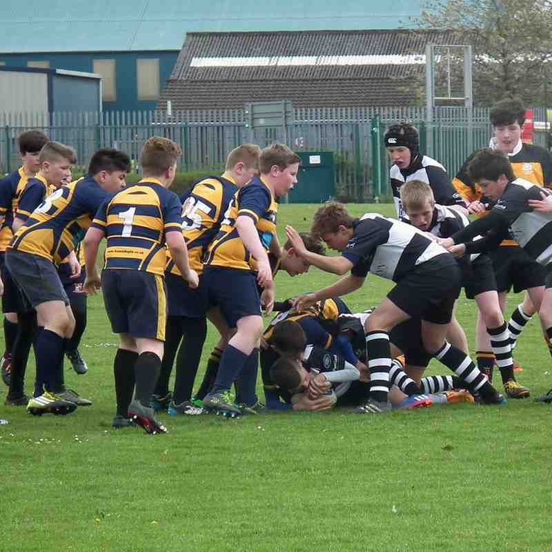 Perthshire U/13 beat Waysiders Drumpellier RFC 52-3 (29/4/17)