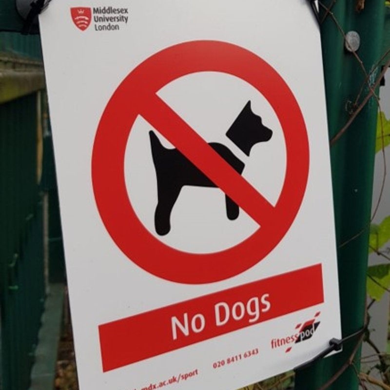 IMPORTANT NOTICE FOR ALL DOG OWNERS