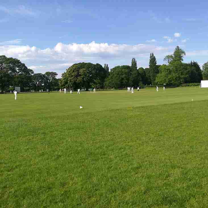 WEEKLY ROUNDUP: Mixed week for both senior and junior sides