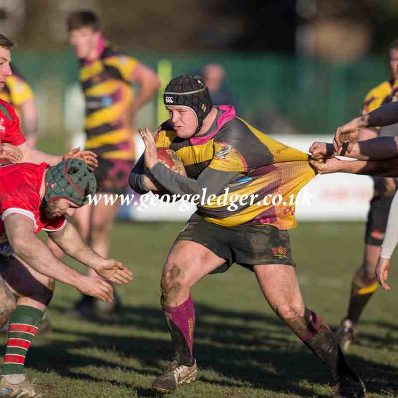 Consett 2nd XV 45 - 19 West Hartlepool Stags - 2017 02 04