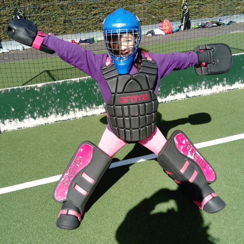 IT'S BACK - Primary School's Hockey Festival October 18!