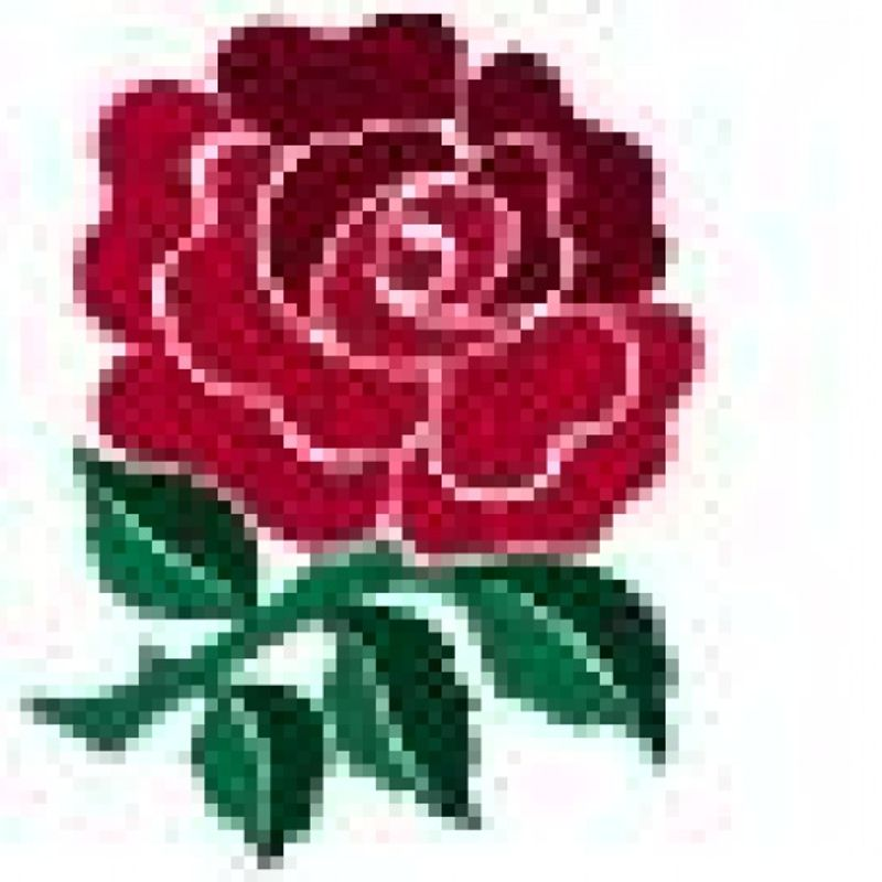 WALES INTERNATIONAL RUGBY lose to ENGLAND 16 - 21