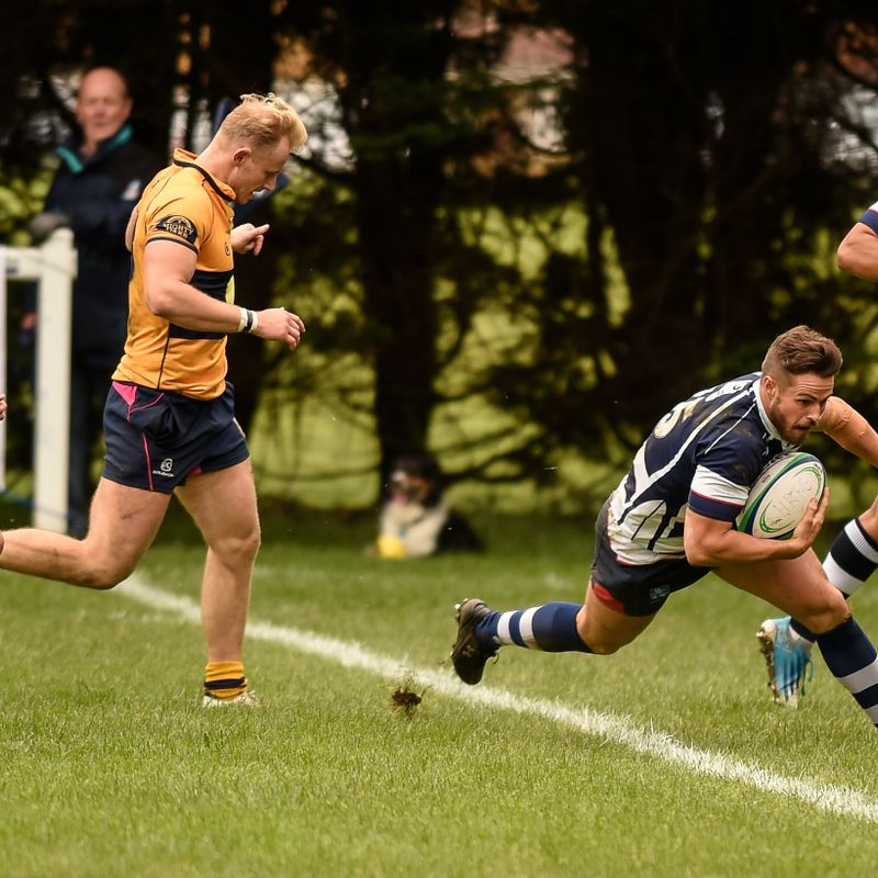 Chambers grabs four as Hav fell Oaks