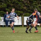 Havant keep momentum with a hard fought win against Chobham