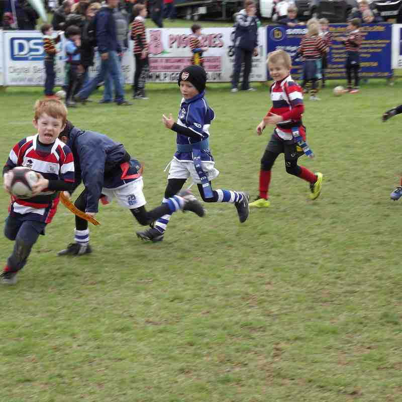 Herts County Tag Festival 2015