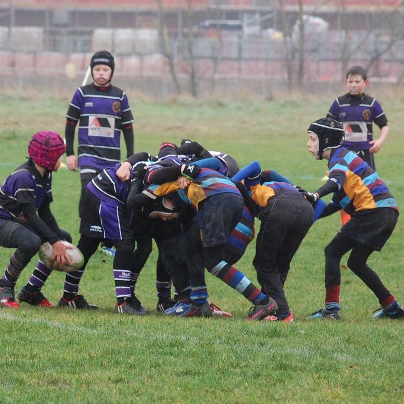 Under 11's Back In Fighting Form